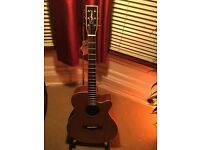 Fantastic sounding TANGLEWOOD TFS CE N acoustic guitar. Brand new ..Bargain