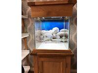 Aqua Oak 80 ltr fish tank only 5 months old.