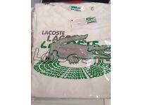 LACOSTE T-shirt L