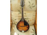 FENDER FM-100 MANDOLIN WITH GIG BAG-POSTAGE AND OFFERS MAY BE POSSIBLE