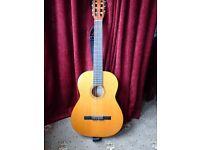 Acoustic 6 string guitar
