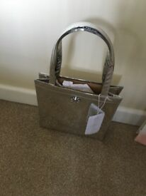 Ted baker small silver bag, Brand new with tags