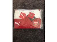 BRAND NEW Arsenal evoKNIT Authentic 18/19 Home Shirt.