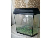 Small Corner Fish Tank Aquarium Forsale