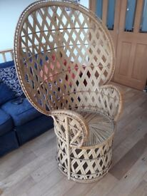 Retro peacock cane chair