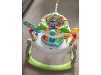 The Fisher Price Rainforest SpaceSaver Jumperoo