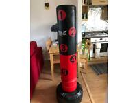 *LIKE NEW* Boxing/MMA Speed Bag