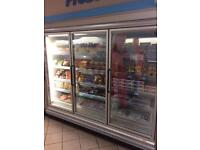 Arneg Bermo 3 door remote freezer unit.