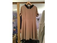 Women's Skater Dress (Tan & Black ) - Dorothy Perkins - Size 18