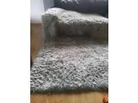 Beautiful Silver Grey large rug