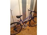Raleigh bike girls purple