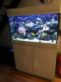 Breaking Red sea reefer c250 full setup and stock