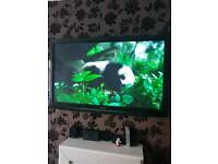 Panasonic TX-P42S21BA 55in TV with wall mount and sorround sound.