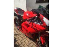 Truly One Off Special Triumph/Ducati ( Swop/PX Ducati/GSX1400/Z1000 see advert )