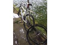 Bike £20 needs gone now