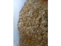 Dumpy bags sawdust/ shavings - animal bedding