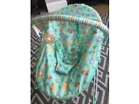 Bright Starts Vibrating Baby Bouncer