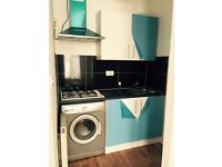 One bedroom flat close to ilford station-950-dss