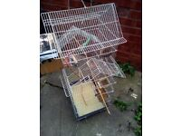 free bird cage and seeds
