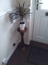 PLANT STAND (SOLID MAHOGANY)