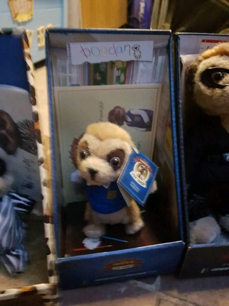 Compare the market meerkat. Bogdan.