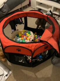 Pet play pen and balls/tunnel