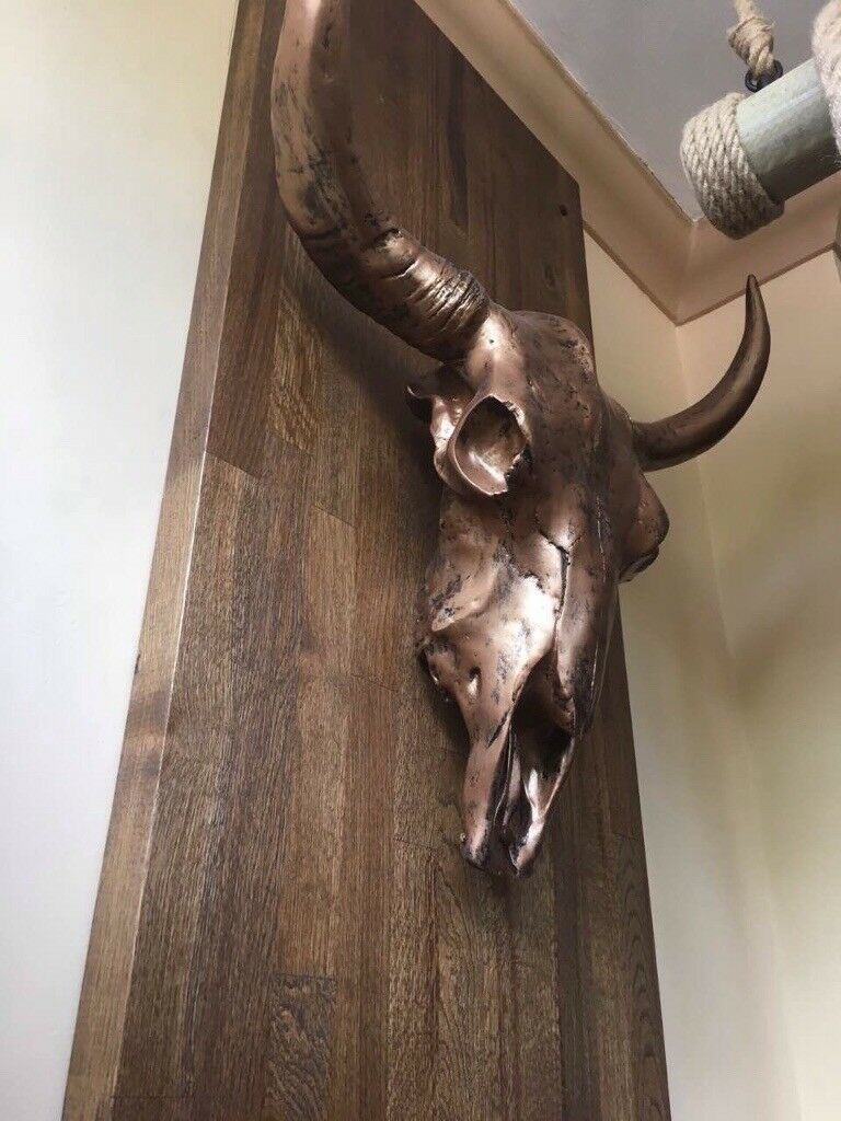 Buffalo head skull solid brass hang wall staue horn heavy 20cm cow