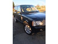 Immaculate Range Rover Vouge