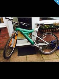 RALEIGH MOUNTAIN BIKE ( REDUCED PRICE )