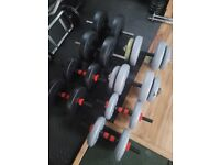 Dumbbell handles and weights