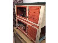 2 guinea pigs and large indoor/ outdoor hutch with 2 separate cages