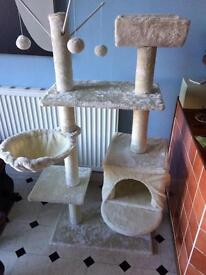 Cat Climbing Activity Scratch Post