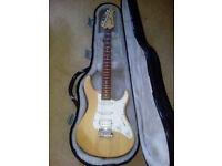 yamaha guitar case and amp