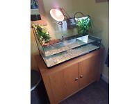 Exo terra large tank and cabinet full setup plus turtles