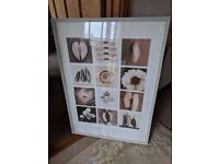 Free - Large framed picture