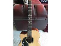 Left handed faith guitar