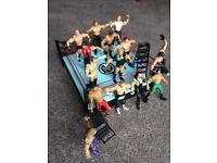 WWE Ring & Figures