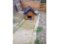 Dog kennel / chicken house