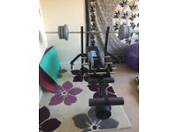 Weight bench and 50kg weights