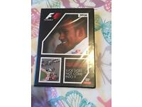 The official review of the 2008 fia f1 championship DVD