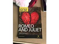 GCSE Romeo and Juliet notes on play plot and an analyse in each character