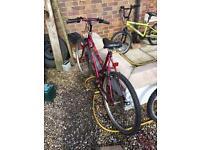 Used 26 inch wheel Raleigh bike
