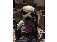 Sergei meerkat
