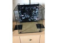 Aqua One 65l fish tank £70(Ono)