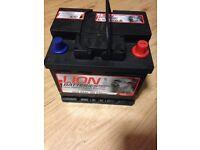 Car battery Lion