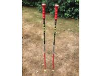 Leki 115 cm World Cup GS poles