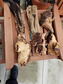 6 x Bogwood pieces
