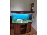 4FT JUWEL BOW FRONTED 280 LITER FISH TANK AND STAND,,FULL SET UP