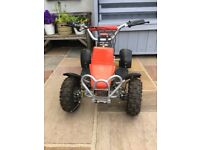 24v metal frame Quad Bike