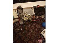 Sarecen mountain bike